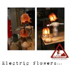 Electric flowers...